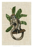 Canopy Monkey I Fine-Art Print