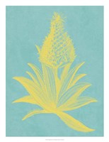 Pineapple Frais I Fine-Art Print