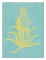 Pineapple Frais II Fine-Art Print