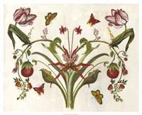 Botanical Hybrid II Fine-Art Print