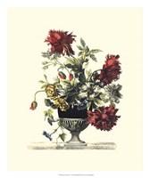 Flowers for June II Fine-Art Print