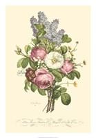 Plentiful Bouquet III Fine-Art Print