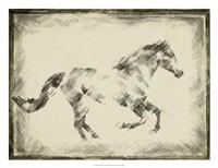 Equine Study I Fine-Art Print