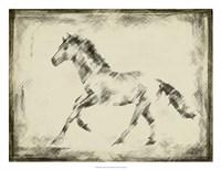 Equine Study II Fine-Art Print