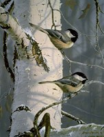 Chickadees At Dawn Fine-Art Print