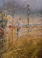 Autumn Mist Fine-Art Print