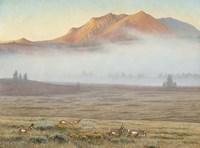 Mackenzie Passage Fine-Art Print
