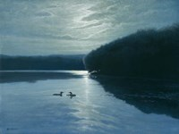 Moonlight Loons Fine-Art Print