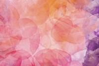 Flores Compuestas 1 Fine-Art Print