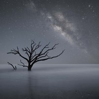 Milky Way In Botany Bay 1 Fine-Art Print