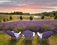 Lavender Chairs, Horton Bay, Michigan '14-color Fine-Art Print