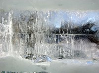Fairy Winter Fine-Art Print
