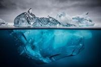 Buoyancy Fine-Art Print