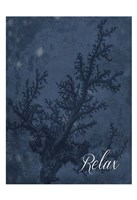 Blue Water Coral Relax Fine-Art Print