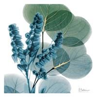 Golden Lilly Of Eucalyptus Fine-Art Print