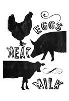 Local Eggs Meat Milk Fine-Art Print