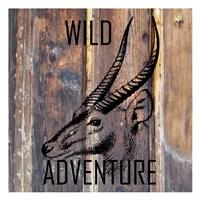 Wild Adventure Fine-Art Print