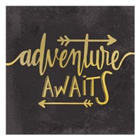 Adventure Awaits 1 Framed Print
