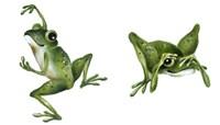 April Showers - Frogs Fine-Art Print