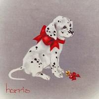 Dalmation Pup Fine-Art Print