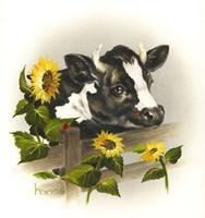 Bull & Sunflowers Fine-Art Print