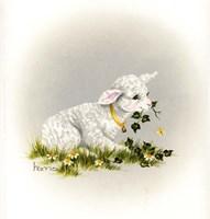 Little Lambsy Divey Fine-Art Print