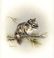 Tattle-Tail Baby Fine-Art Print