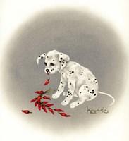 Dalmation 5 - Chile Dog Fine-Art Print