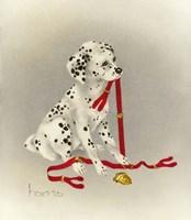 Dalmation 4- Hot Diggity Dog Fine-Art Print