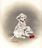 Dalmation 2 - Curiosity Fine-Art Print