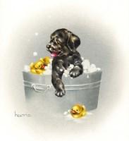 Ducks Unlimited Fine-Art Print