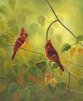 Autumn Cardinals Fine-Art Print