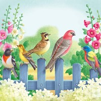 Songbirds On Fence Fine-Art Print