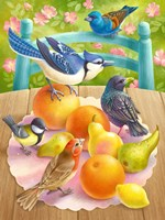 Birds And Fruits Fine-Art Print