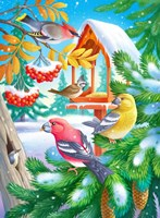 Winter Birds Fine-Art Print