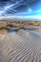 Dune Lines Vertical Fine-Art Print