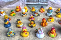 Rubber Duckies Fine-Art Print