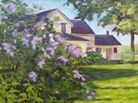 Lilac Bush Fine-Art Print
