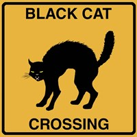 Black Cat Crossing Fine-Art Print