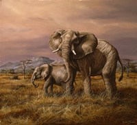 Mother and Child (Elephants) Fine-Art Print