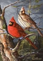 Winter's Perch 2 Fine-Art Print