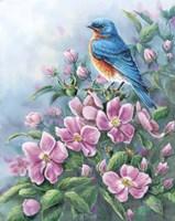 Blue Bird And Wild Roses Fine-Art Print
