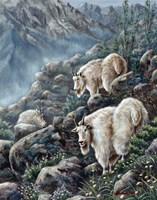 Mountain Voyager Fine-Art Print