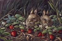 Strawberry Bunnies Fine-Art Print