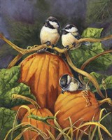 Chickadees And Pumpkins Fine-Art Print
