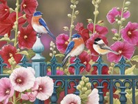 Iron Fence with Hollyhocks Fine-Art Print