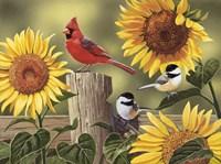 Sunflowers and Songbirds Fine-Art Print