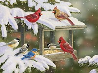 Feasting at the Feeder Fine-Art Print