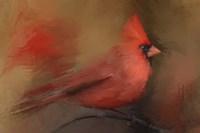 America's Favorite Red Bird Fine-Art Print