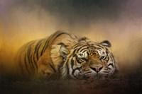 The Tiger Awakens Fine-Art Print